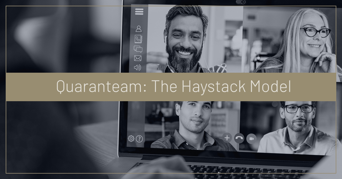 Quaranteam the Haystack Model